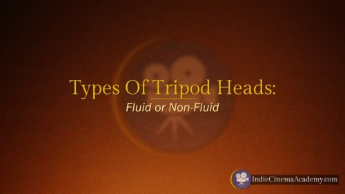 Types of Tripod Heads (Camera Lesson 14)