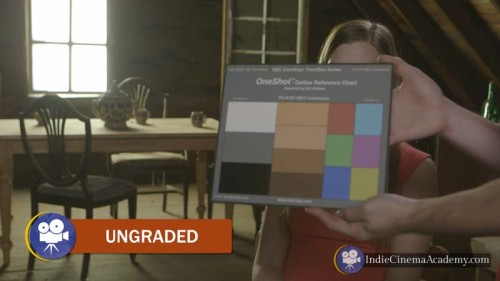 Ungraded Example: One Shot Color Chart (3 Essentials)