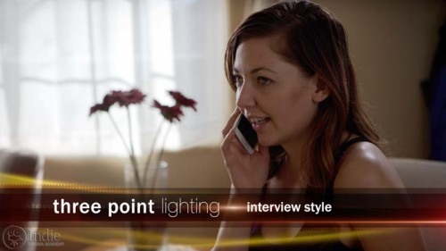 Three Point Lighting: Interview (LC105)
