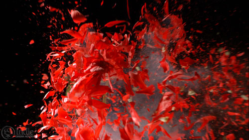 Bullet Through Frozen Red Flower At High Speed (CS001)