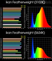 ikan Featherweight Bi-Color