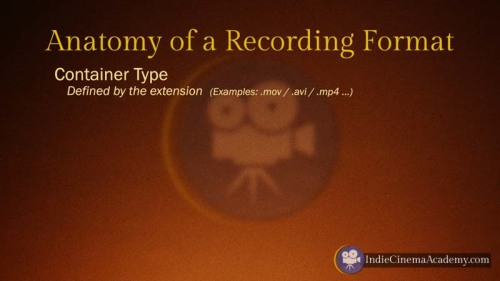 Anatomy of Recording Formats: Container Type (Camera Lesson 10)