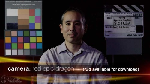 Red Epic Dragon: Different LED Lights Creates Bad White Balance Issues (AR015)
