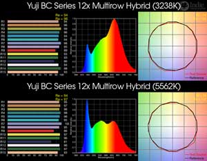 Yuji BC Series 12x Multirow Hybrid BiColor LED